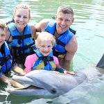 Dolphin Discovery Los Cabos Foto
