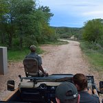 Setting off on a game drive