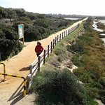 Foto de Ria Formosa Natural Park