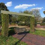 Swings in Chambers Park