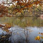 St. Joe River 1