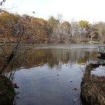 St. Joe River 2