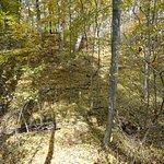 Fall Color Hiking 4