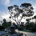 Foto de Paradise Point Resort & Spa