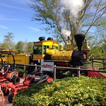 Busch Gardens Photo