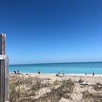 Foto de Shuckers on the Beach
