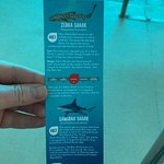 more shark species, I love all of the info..teacher in me