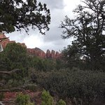 We visited on 3/15 and it was cool out and beautiful!  We had so much beauty to take in.  We lef