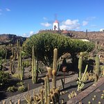 Photo of Jardin de Cactus