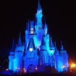 Bild från Magic Kingdom