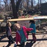 Billede af The Maryland Zoo