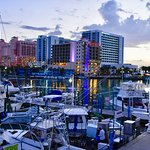 sunset view over Clearwater Beach marina