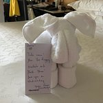 Roger in housekeeping heard I was under the weather and he made our bed with animals and a note.