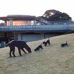 Photo of Oita Art Museum