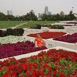 Al-Mamzar-Park Foto