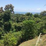 Foto de Sí Como No Resort & Wildlife Refuge