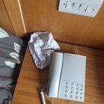 Tavistock Hotel Photo