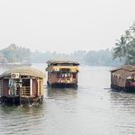 View from our houseboat of others on the backwaters