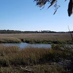 River turning into marsh