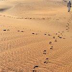 Photo of National Park of Souss Massa