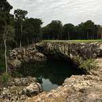 Cenote looking toward the green on #6