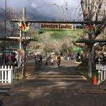 Oakland Zoo Foto
