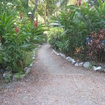 The gardens through the property.
