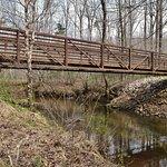 Bear Swamp Bridge