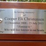 Very touching memorial bench in the Torquay board walk.