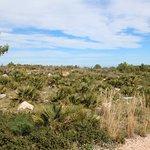 Billede af Macizo del Montgo Natural Park