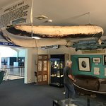 Photo of Killer Whale Museum