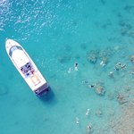 Snorkeling from above | Whitehaven Xpress