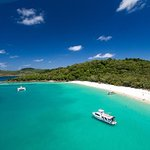 Whitehaven Beach | Whitehaven Xpress