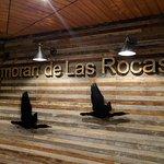 Photo of Cormoran de Las Rocas
