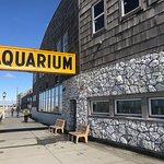 Seaside Aquarium Photo