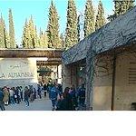 Feb 2018 - Al-Hambra Entrance