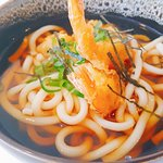Udon topping with tempura prawns   Japanese thick wheat noodle in Japanese style soup with tempu