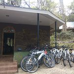 Cycles are available on rent at the starting of Periyar Tiger Reserve to reach the lake