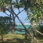 Photo of Lady Elliot Island Eco Resort