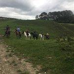 Horse Trekking Lake Okareka March 2018