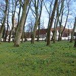 Photo of Beguinage (Begijnhof)