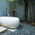 Garden Glass Villa