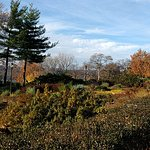 Photo of Fort Tryon Park