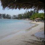 Plusieurs endroits ombragés soit sous les cocotier ou palapas
