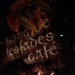 Bosc de les Fades Foto