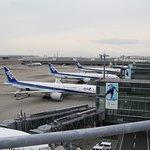 展望デッキ右側にはANAの国際線航空機が並んでました