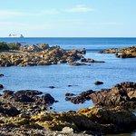 Looking across Rocky Coastline to Cook Strait from The Esplanade