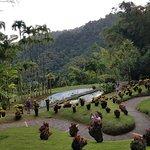 Photo of Jardin de Balata