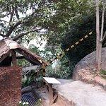 Mango Bay Foto