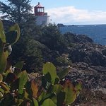 Amphitrite Point Lighthouse, Ucluelet - view from the second bench March 2018
